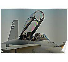 Warbirds Downunder 2013, Hornet Poster