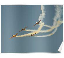 Warbirds Downunder 2013, Harvards Poster