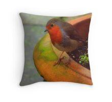 Robin in my Garden Throw Pillow