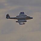 Warbirds Downunder 2013, Gloster Meteor by bazcelt