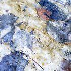 Leaves under Water by Angelika  Vogel