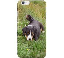 marlow, der appenzeller iPhone Case/Skin