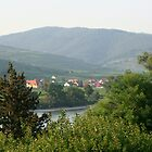 Small village through the trees across the Danube Wachau Austria by Ilan Cohen