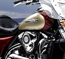Kawasaki Nomad Easy Rider Sticker