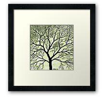 BIG OLD TREE Framed Print
