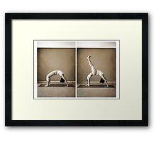 yoga9 Framed Print