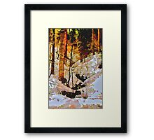 Abstract Nature Scene Framed Print