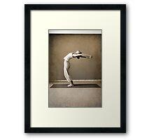 yoga11 Framed Print