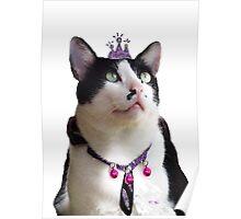 King Tux >^^< Poster