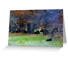 Cattle Nestled Down From the First Winds of November Greeting Card