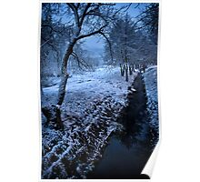 Morning in winter Poster