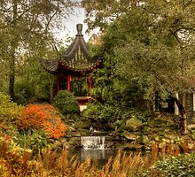 Chinese garden in autumn by Thea 65