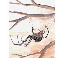 Black Widow Spider Watercolor Photographic Print