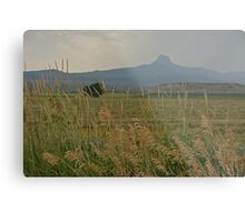 Prairie Waves Metal Print
