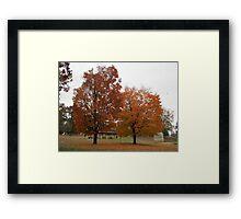 Fall 2013 1 Framed Print