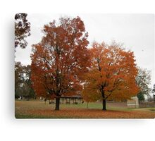Fall 2013 1 Canvas Print