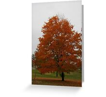 Fall 2013 9 Greeting Card