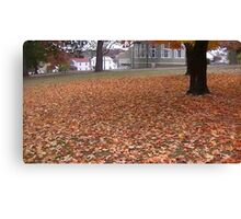 Fall 2013 13 Canvas Print