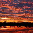 Lake Sunset - West Chester Ohio by Tony Wilder
