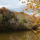 Home on the River - Little Miami River Mainville Ohio by Tony Wilder