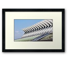 Museum of Science Framed Print