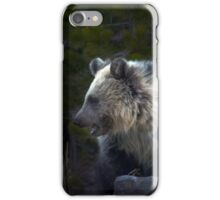 Grizzly Cub-Signed-#3644 iPhone Case/Skin