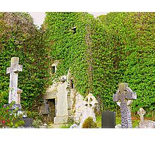 The Ruins Of Rathmullan Priory Photographic Print