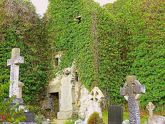 The Ruins Of Rathmullan Priory by Fara