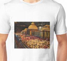 Model New York Botanical Garden, Model Trains, New York Botanical Garden Holiday Train Show, 2015, Bronx, New York Unisex T-Shirt