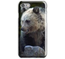 Grizzly Bear Cub-Signed-#3686 iPhone Case/Skin