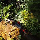 Model Buildings, Model Trains, New York Botanical Garden Holiday Train Show, 2015, Bronx, New York by lenspiro