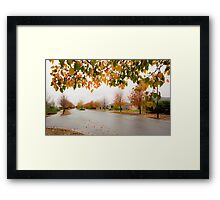 Beauty in Suburbia Framed Print