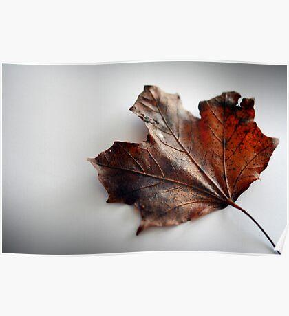 Autumn Is Coming Poster