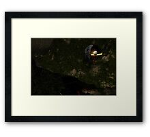 To Find Another Earth Framed Print