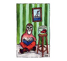 KMAY Hoodkid Owl Reading Photographic Print