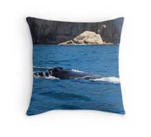 Humpback Whale Spout Throw Pillow