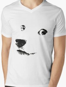 Doge Mens V-Neck T-Shirt