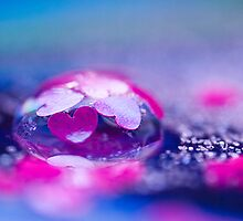 Bubble love. by Sherstin Schwartz