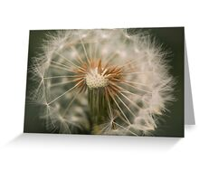 Make a Wish - Dandelion Seed Head Greeting Card