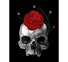 Death's Rose Photographic Print