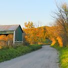 The Hay is in the Barn by TrendleEllwood