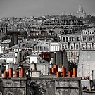 Paris rooftop by Victor Pugatschew