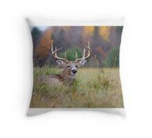 Autumn in Canada - White tailed deer Buck Throw Pillow