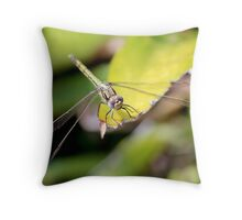 A colourful little character... Throw Pillow