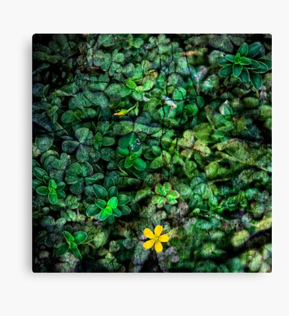 Express yourself with flower power Canvas Print