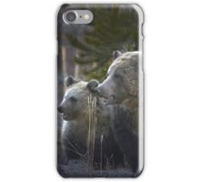 Grizzly Bear Sow And Cub-#3438 iPhone Case/Skin