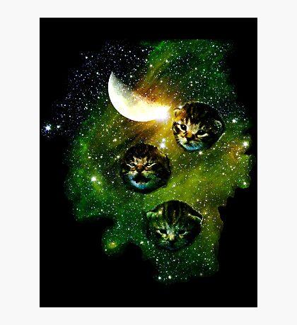 three cosmic kittens Photographic Print