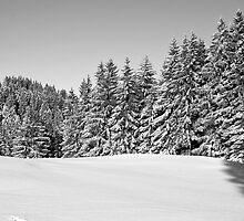 winter scene by caughtinmotion