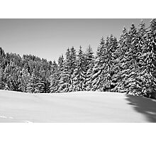 winter scene Photographic Print