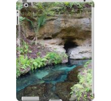 The Eye of the Spring  iPad Case/Skin